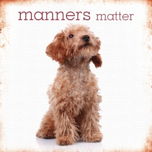 Manners matter with sweet puppy dog waiting for instructions