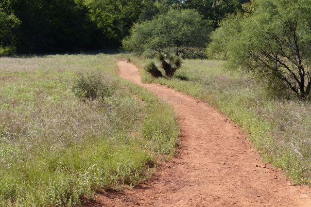 Path thru a meadow