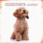 Manners Matter picture with puppy