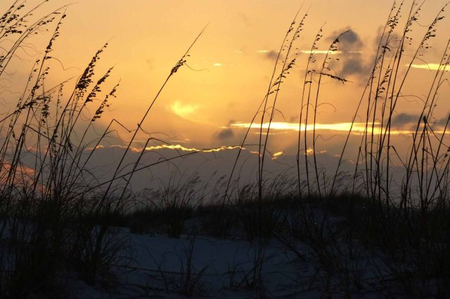 Sunrise over the sand dunes in Pensacola, Florida