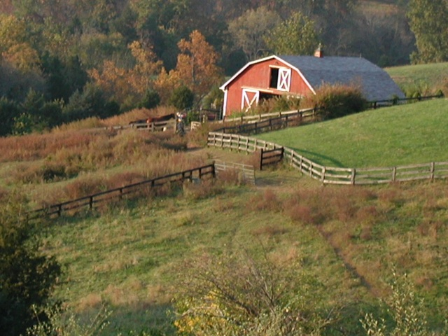 Virginia fields with red barn in background
