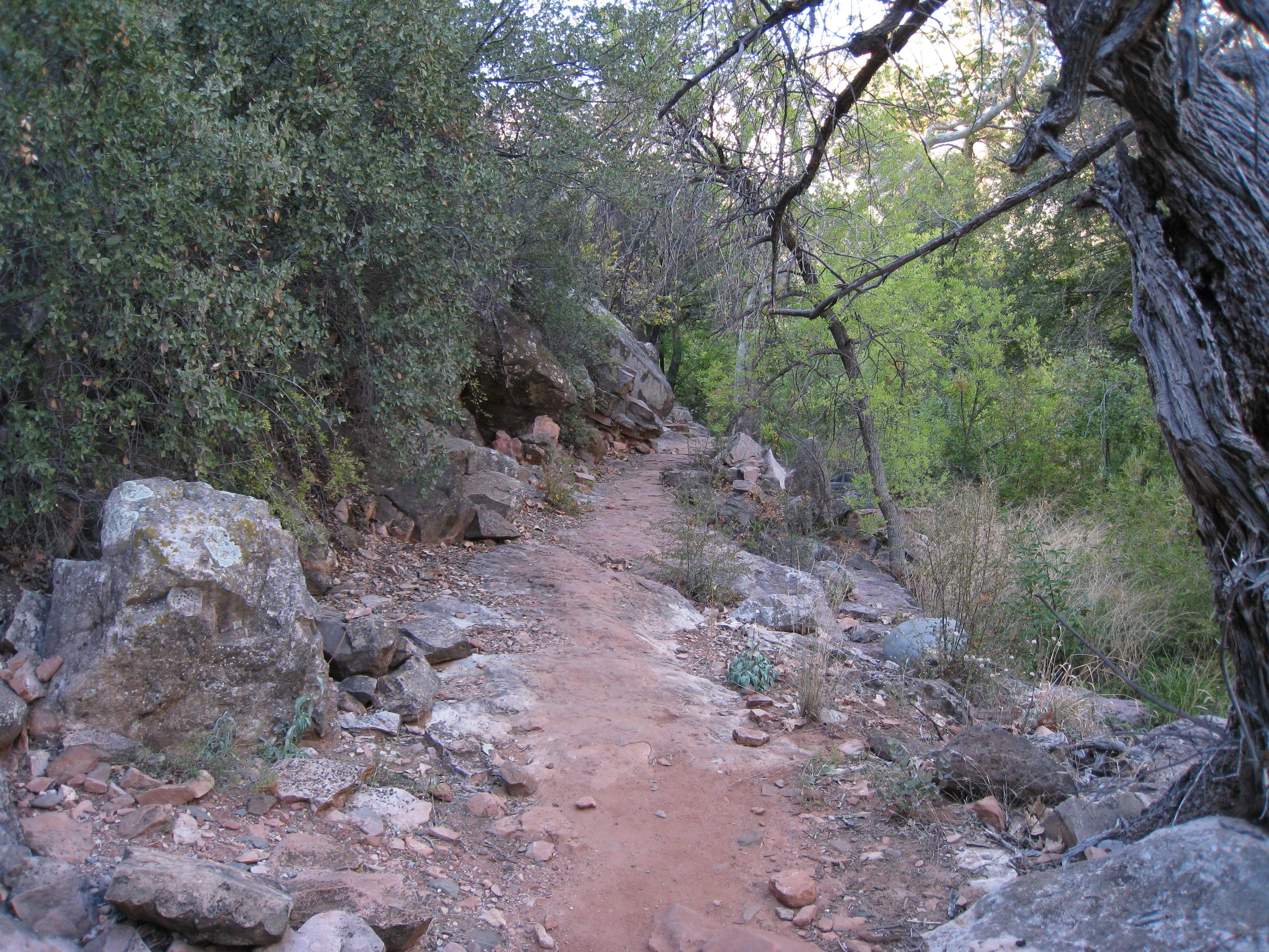 A rocky dirt path