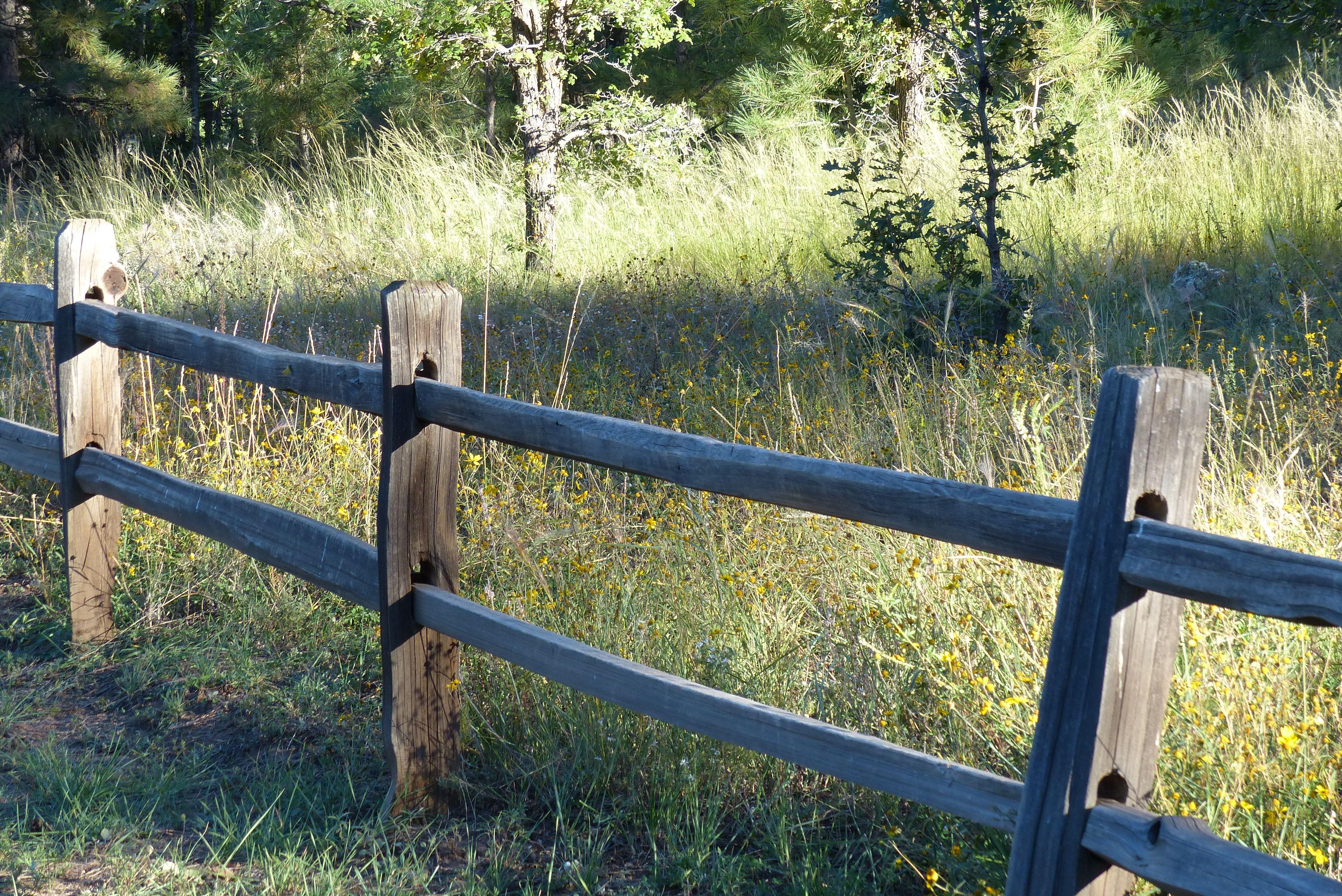 Wood rail fence in meadow