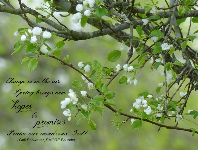 Pear tree in bloom with quote