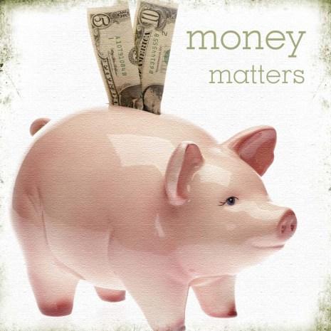 Money Matters piggy