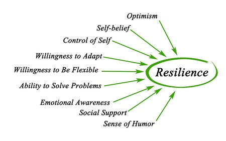 40761315 - diagram of resilience